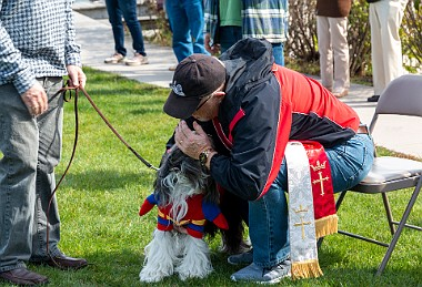Dogs On The Dock 2019 Dogs On The Dock is an annual event each Fall along the Essex, CT riverfront. There's a blessing of the dogs, costume...